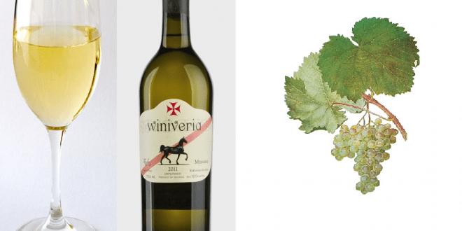 ღვინო მანავის მწვანე gvino manavis mwvane