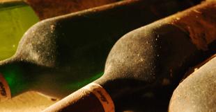 ღვინის სამშობლო