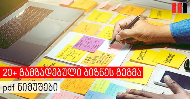 გამზადებული ბიზნეს გეგმა ნიმუში pdf [20+]